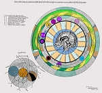 Keely Chart 16 Chart of the Sinuses and Nerves of the Skull Vibroetherically considered as associated with the Liberator (color)